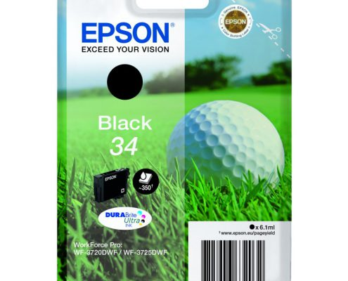 Epson 34 black golfball ink cartridge